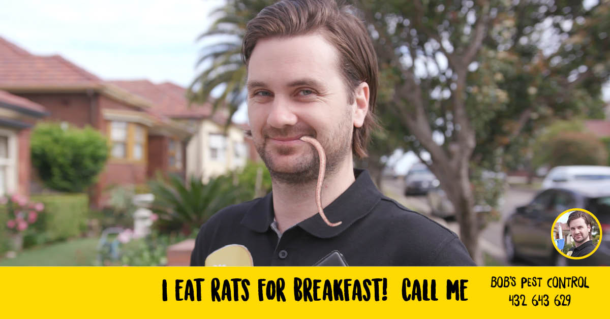 Bobs Bad Ads - I Eat Rats