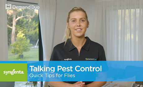 Aimee's quick tips for fly control