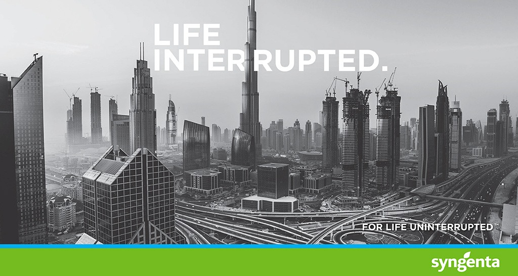 Life Interrupted - Dubai