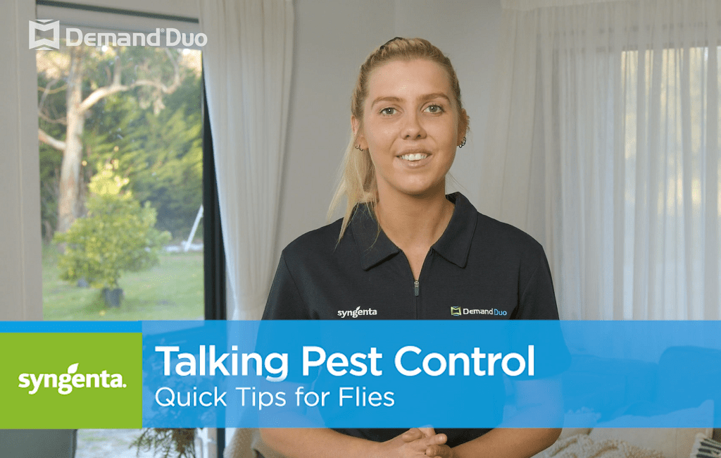 Aimee's quick tips for fly control with Demand Duo