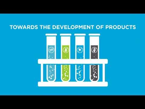 Syngenta Corporate PPM Infographic video
