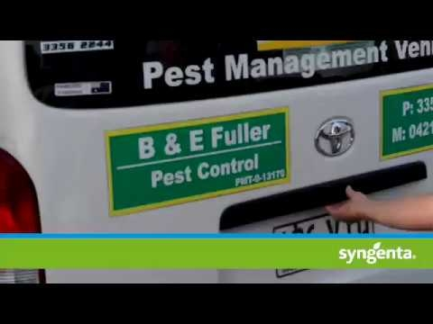 Arilon Insecticide from Syngenta