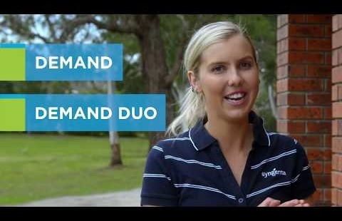 Talking Pest Control: Where to use Demand vs Demand Duo