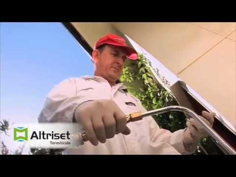 David Cloake testimonial on Altriset from Syngenta - 2016